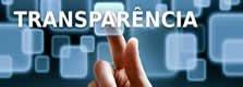 Novo Portal Transparência